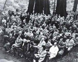 group gathered in Muir Woods