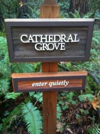 cathedral grove sign