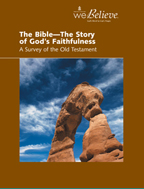 The Bible — The Story of God's Faithfulness cover