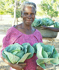 Woman with cabbage