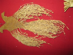 A rice variety displayed in style