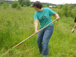 Ellen smith using a scythe in a grassy field.