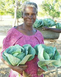 A woman holding two heads of large-leafed cabbage.