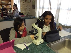 Menaul 6th grade students use new digital microscopes that send images to their iPads.