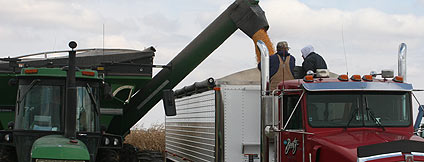 Photo of a combine pouring corn into a truck