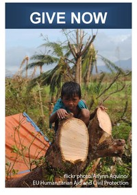 Philippines boy on cut off tree