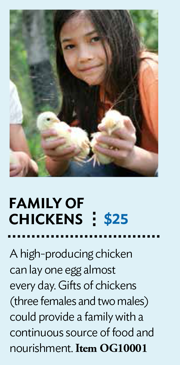 Chickens from Presbyterian Giving Catalog