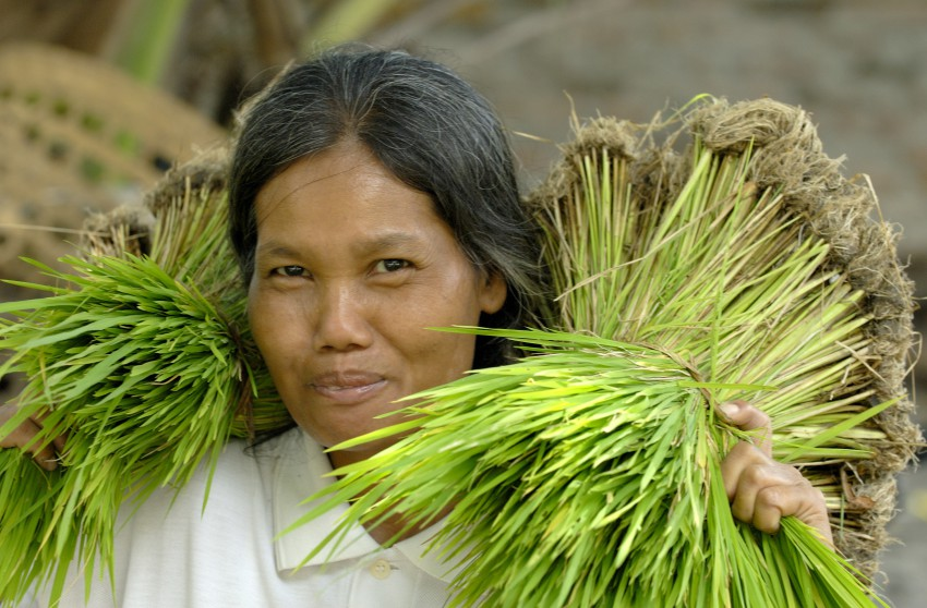 Filipina woman with rice
