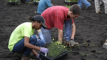 FPC Howard County youth planting flowers