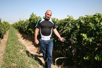 Armenian farmer shows grape harvest from Jinishian micro-loan.