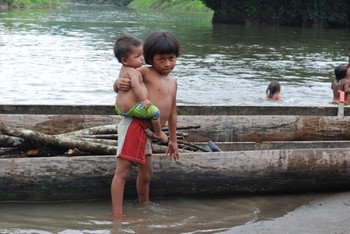 More than a quarter of Colombia's 1.4 million Indians have been forced to flee their tribal lands in recent decades.