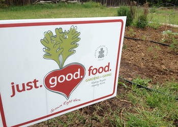 just.good.food is trying to create and strengthen partnerships between community gardens and organizations that provide food for those who are hungry.