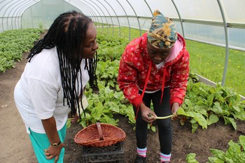 Cynthia White, coordinator of SDOP (left), meets with a member of Detroit's Oakland Avenue Community/Market Garden and Greenhouse Cooperative.