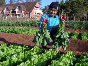 Ms. Sariaka works in the garden of the Church of Jesus Christ in Madagascar (FJKM) Ivato Seminary in Antananarivo, Madagascar, which is supported by PC(USA).