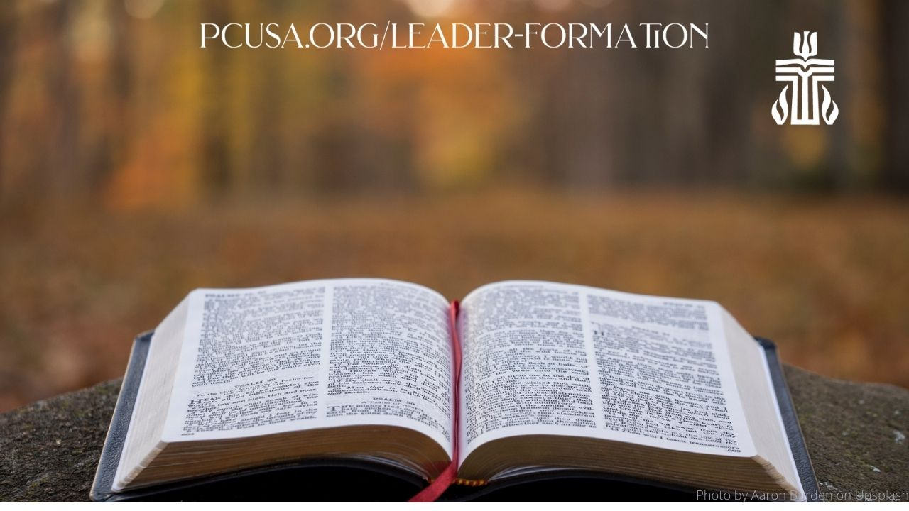 Year in Leader Formation Zoom Background Bible