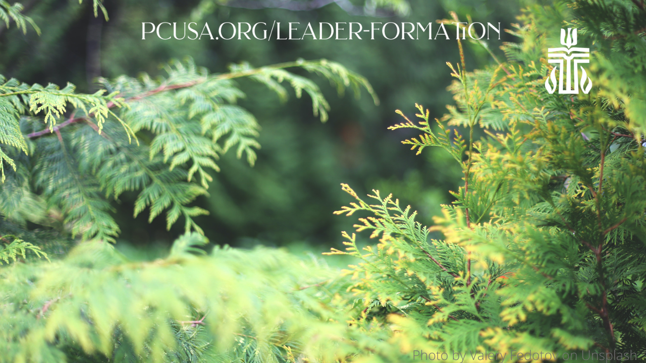 Year in Leader Formation Zoom Background Evergreen