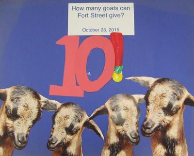 10 Goat Goal