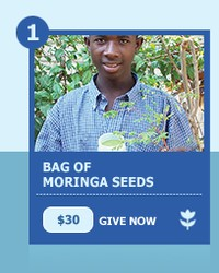 One Bag of Seed - $30